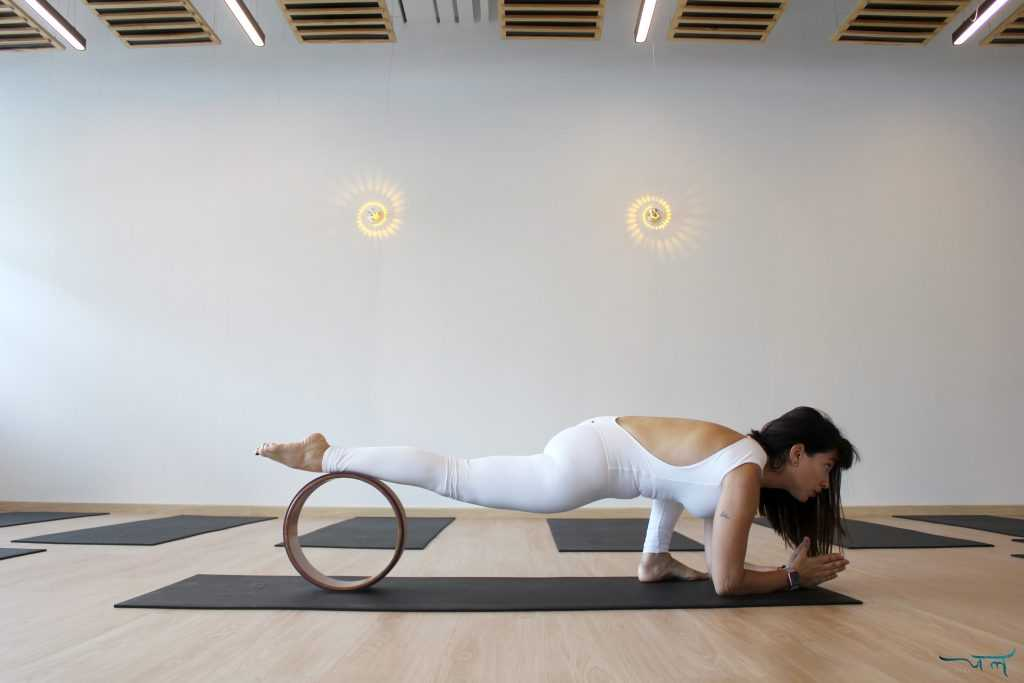 Know The Benefits Of Training With Yoga Wheels Jal Yoga