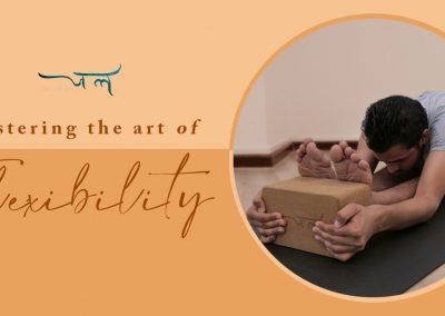 Mastering the Art of Flexibility Workshop (Mar'20)