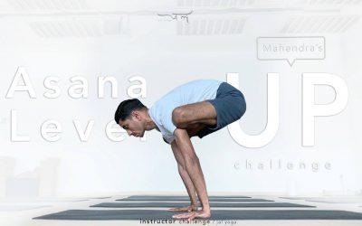 Mahendra's Asana Level Up Challenge   Instructor Challenge